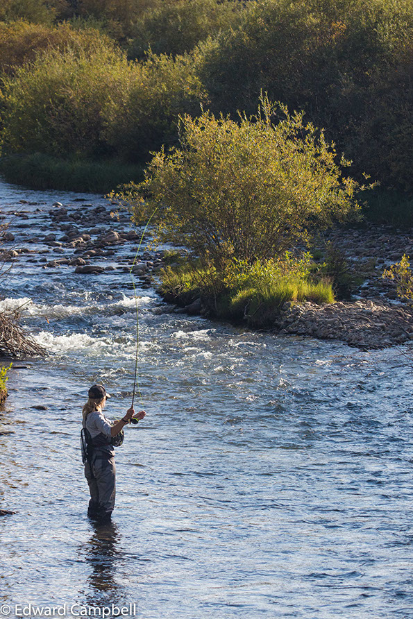 Edward campbell people photographs for Fly fishing breckenridge